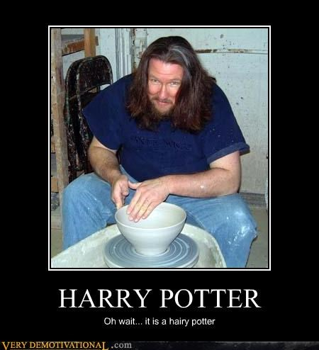 awesome,lol,potter,Pure Awesome