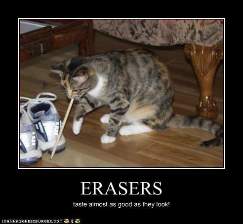 ERASERS taste almost as good as they look!