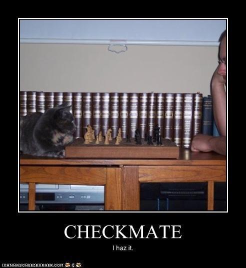 Cheezburger Image 3355287040