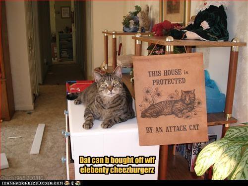 Cheezburger Image 3356118272
