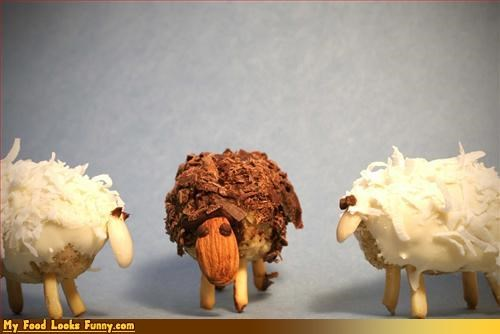 coconut sheep Sweet Treats - 3356326656