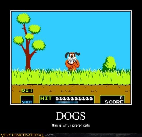 cat giggle duck hunt dogs - 3357182976