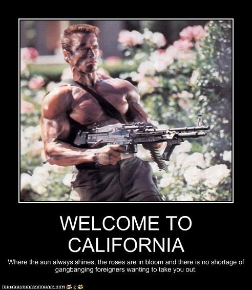 WELCOME TO CALIFORNIA Where the sun always shines, the roses are in bloom and there is no shortage of gangbanging foreigners wanting to take you out.