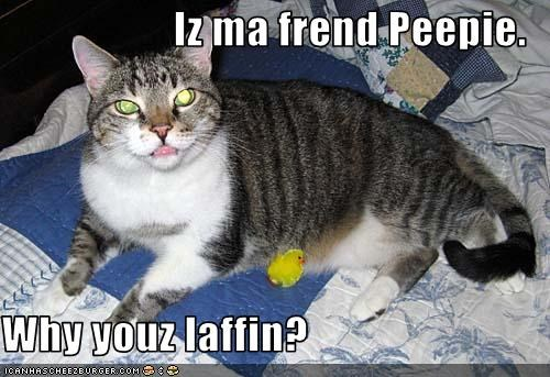 Iz ma frend Peepie.   Why youz laffin?