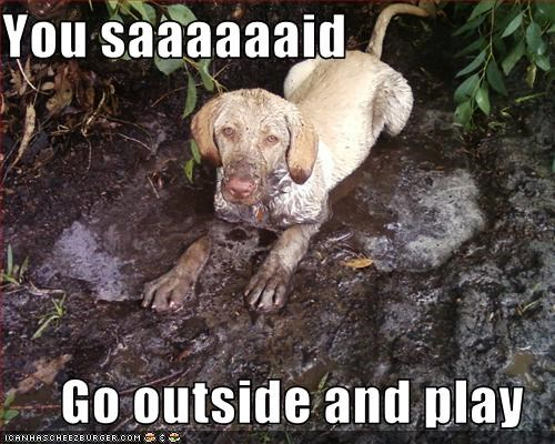 digging,dirty,go outside,justification,messy,mud,muddy,play,playing,puppy,you said