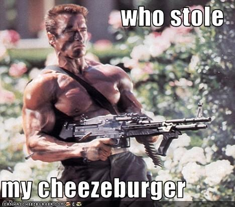 Cheezburger Image 3360516864