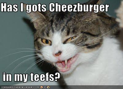 Cheezburger Image 3365542400