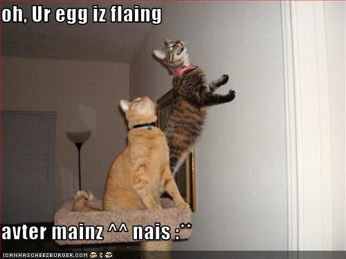 oh, Ur egg iz flaing   avter mainz ^^ nais :**