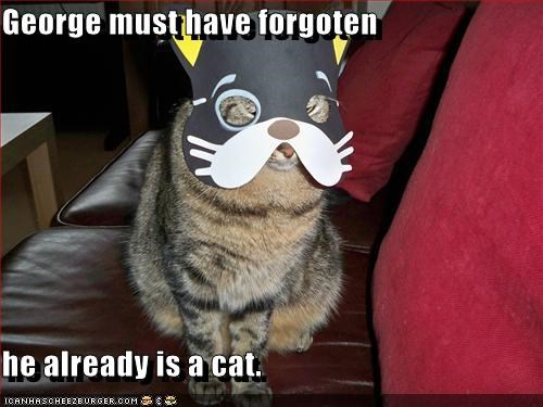George must have forgoten  he already is a cat.