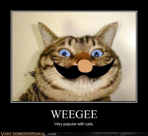 costume cat weegee - 3368531968