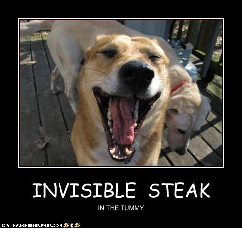 INVISIBLE STEAK IN THE TUMMY