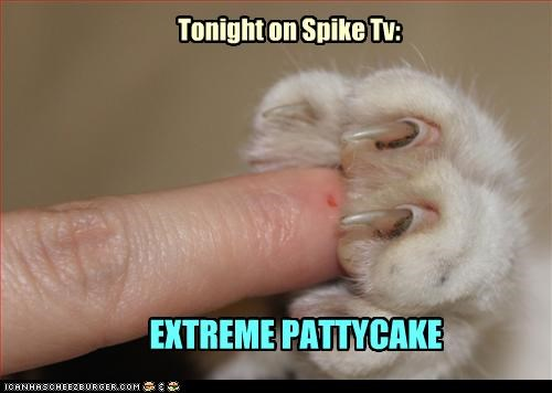 Tonight on Spike Tv: EXTREME PATTYCAKE