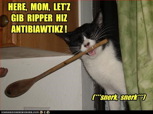 HERE, MOM, LET'Z GIB RIPPER HIZ ANTIBIAWTIKZ ! (***snerk, snerk***)