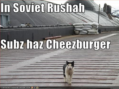 Cheezburger Image 3374362368