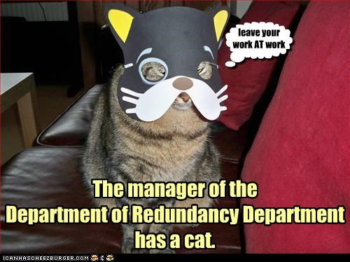 The manager of the  Department of Redundancy Department  has a cat.