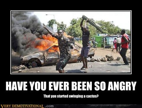 anger cactus demotivational fire Terrifying wtf - 3376039680