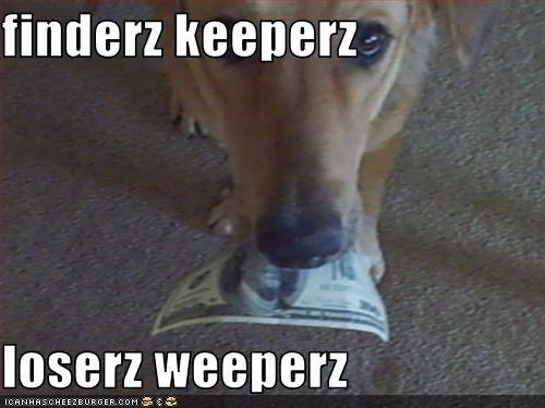 Cheezburger Image 3376615168