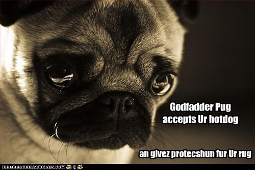 Godfadder Pug accepts Ur hotdog an givez protecshun fur Ur rug