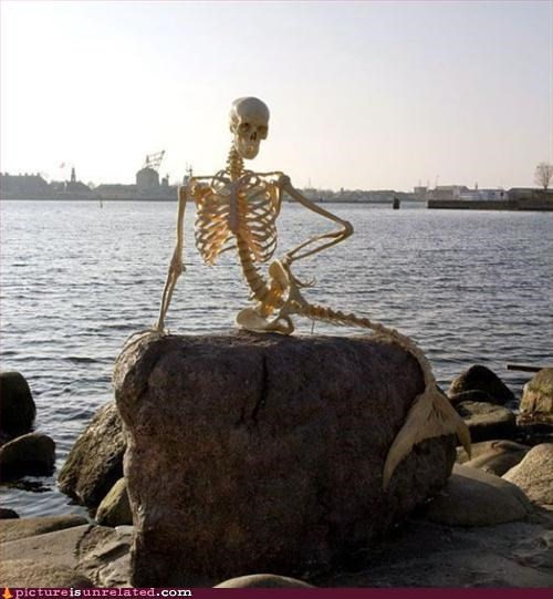 mermaid,mutant,skeleton,wtf