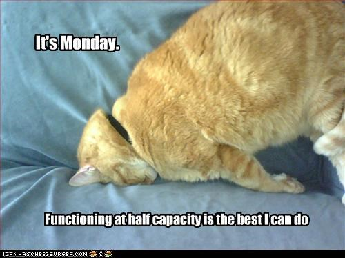 faceplant,meh,mondays,tired