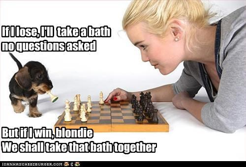 If I lose, I'll take a bath no questions asked But if I win, blondie We shall take that bath together