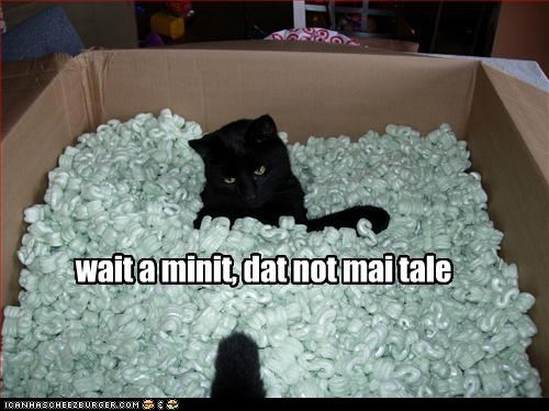 box,oh noes,packing peanuts,tail,weird