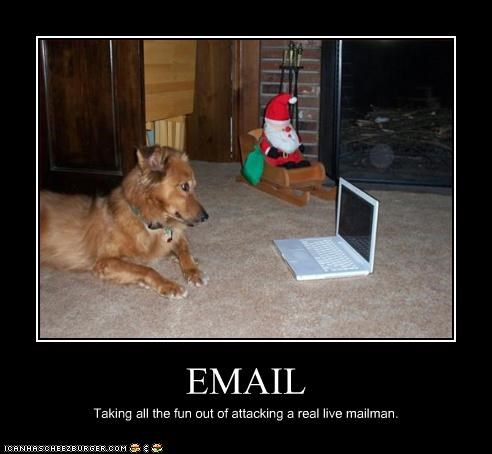 email,laptop,whatbreed