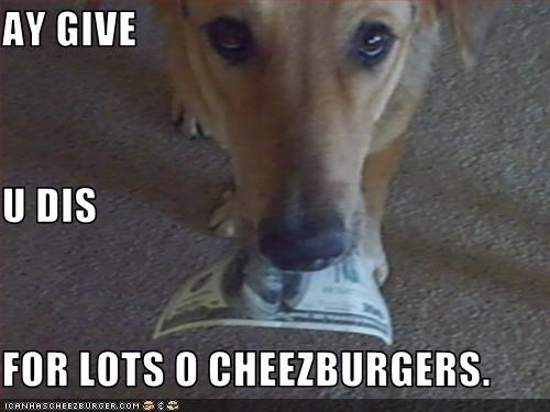 Cheezburger Image 3382516480