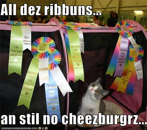 Cheezburger Image 3384223488
