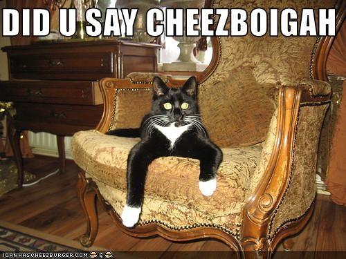 Cheezburger Image 3384634880