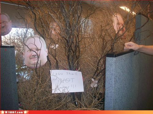 art awesome co-workers not boredom brambles branches creativity in the workplace cubicle cubicle boredom cubicle prank dickhead co-workers empty eye sockets get me the hell out of here insanity jumping to conclusions Lord of the Rings masks mess Office Space prank pwned sass screw you sculpture Terrifying weird weird prank wiseass wtf - 3385538048