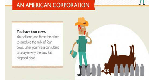 the tale of two cows in infographics