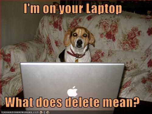beagle delete laptop question using what does it mean