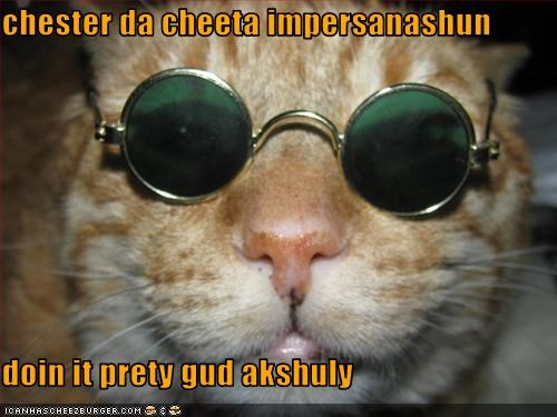 Cheezburger Image 3388876288