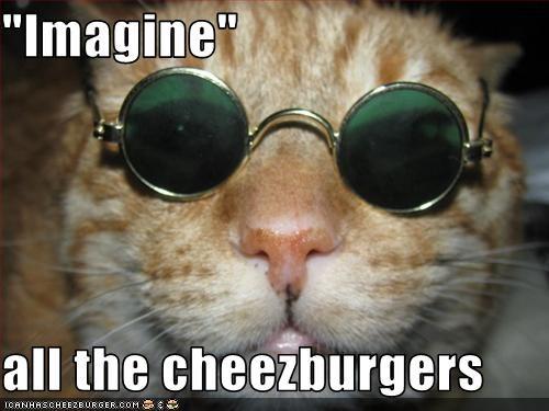 Cheezburger Image 3389053696