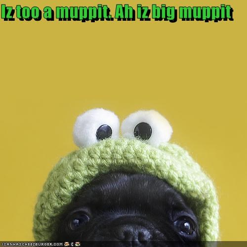Cheezburger Image 3390620672