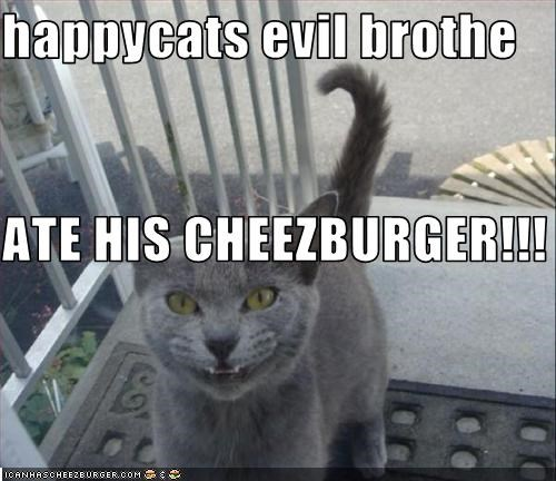 Cheezburger Image 3394013184