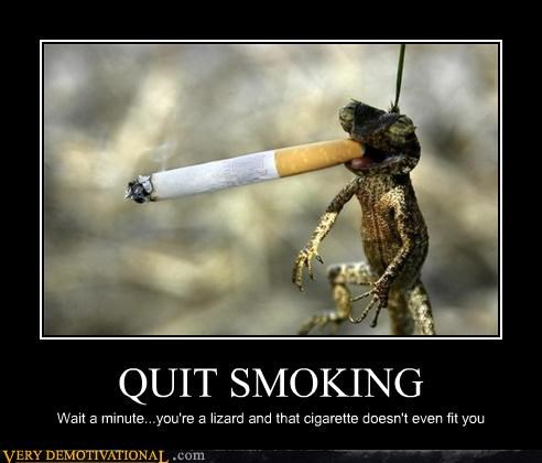 QUIT SMOKING Wait a minute...you're a lizard and that cigarette doesn't even fit you