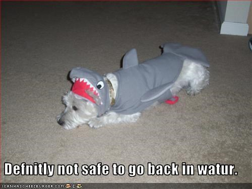 costume jaws Movie shark whatbreed