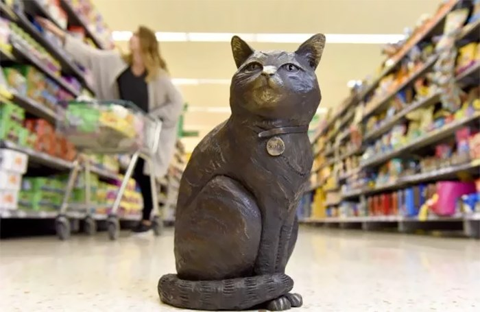 the supermarket cat dies and the community honors him with a statue