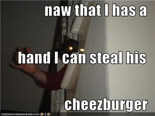 Cheezburger Image 3398449152