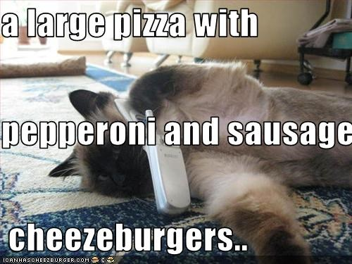 Cheezburger Image 3398657536