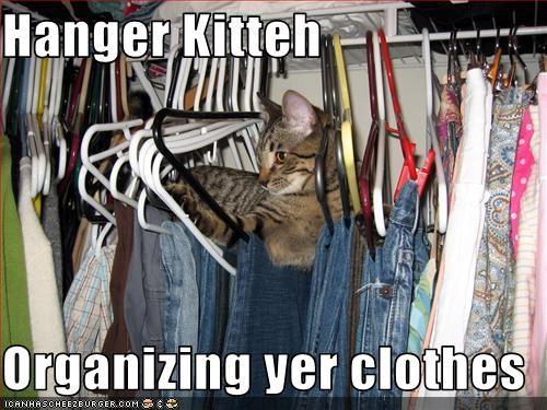 Cheezburger Image 3404845056