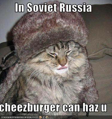 Cheezburger Image 3405223168