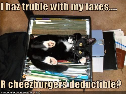 Cheezburger Image 3405614080