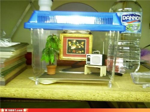 accountant boredom cage creativity in the workplace creepy crawlies cubicle boredom cubicle fail depressing dickheads fake plant miniature painting plastic plant prison Sad sculpture spider tarantula terrarium tiny torture waste of money - 3407953152
