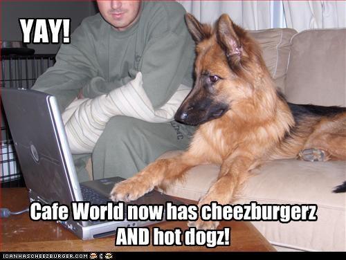 Cheezburger Image 3410507008