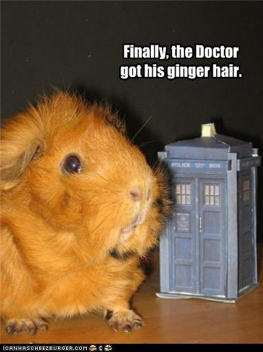 Finally, the Doctor got his ginger hair.