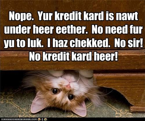 Nope. Yur kredit kard is nawt under heer eether. No need fur yu to luk. I haz chekked. No sir! No kredit kard heer!