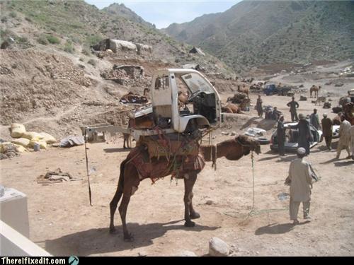 camel,car,desert,mod